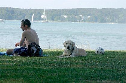Urlaub Am Bodensee Mit Hund Unterkunft